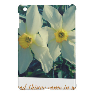 good things come in pairs iPad mini covers