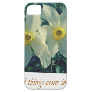 good things come in pairs iPhone 5 covers