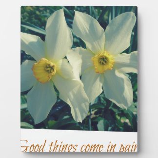 good things come in pairs plaque