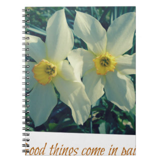 good things come in pairs spiral notebook