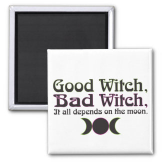 """""""Good Witch, Bad Witch..."""" Magnets"""