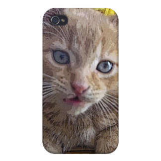 Goofy Tabby Kitty Cat Kitten, Fall Colors, Flowers Case For The iPhone 4