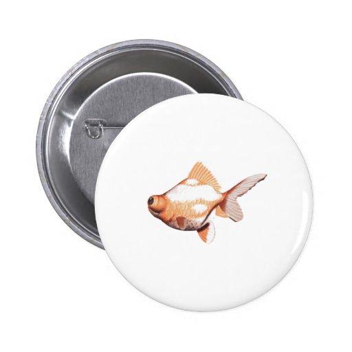 Google Eyed Gold Fish 2 Pinback Buttons