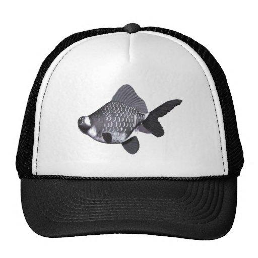Google Eyed Goldfish 3 Hat