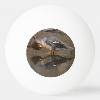 Goosander Ping Pong Ball
