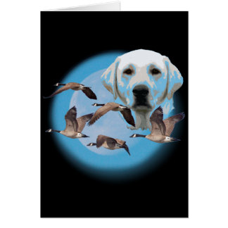Goose hunter 3 card