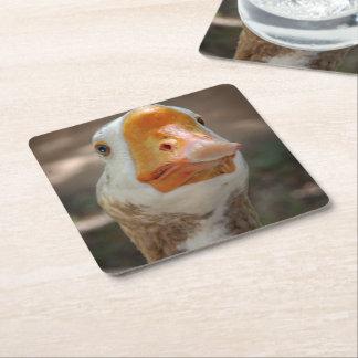 Goose Portrait Square Paper Coaster