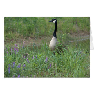 Goose with Hiding Goslings Card