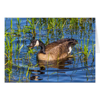 Goose with Something to Say Greeting Card