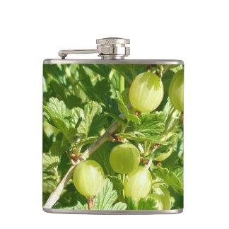 Gooseberry Fruit On Bush Flasks