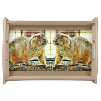 Gopher Twins Serving Tray