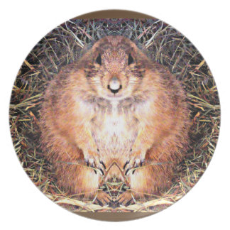 Gordo the Happy Gopher Kitchen Plate