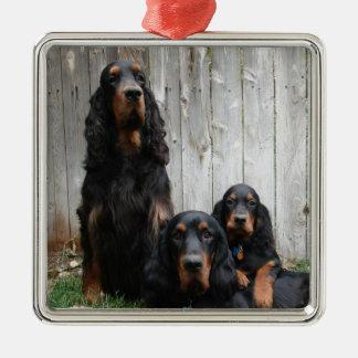 Gordon Setter Generations Photo Ornament