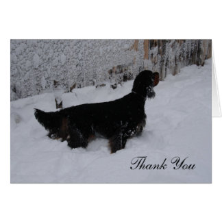 Gordon Setter in a Snowstorm Thank You Note Card