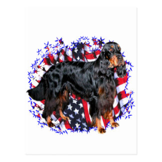 Gordon Setter Patriot Postcard