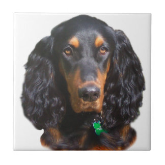 Gordon Setter Portrait Tile