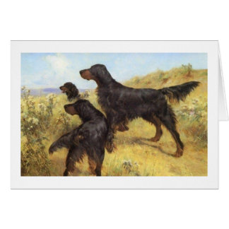 Gordon Setters in the Field, Card