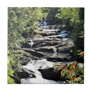 Gorge at Moxie Falls in West Forks Maine Tile