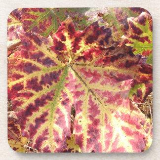 Gorgeous Autumnal Grape Leaf Coaster