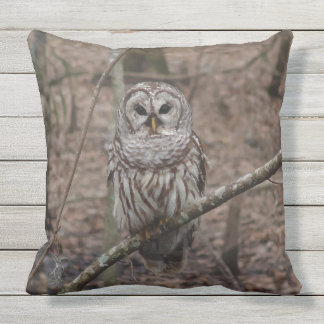 Gorgeous Barred Owl in Forest Throw Pillow