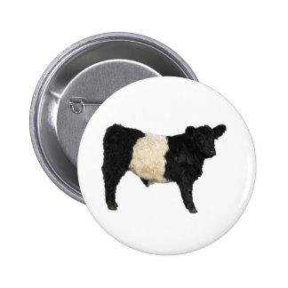 Gorgeous Belted Galloway Steer Cutout 2 Inch Round Button