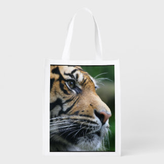 Gorgeous Bengal Tiger Face Grocery Bags