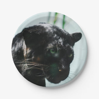 Gorgeous Black Panther 7 Inch Paper Plate