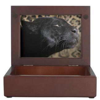 Gorgeous black panther leopard keepsake box