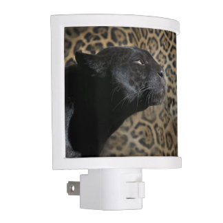 Gorgeous black panther leopard night lights
