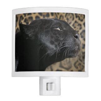 Gorgeous black panther leopard night lite