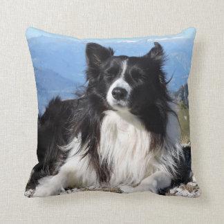 Gorgeous Border Collie Dog black white Throw Pillow