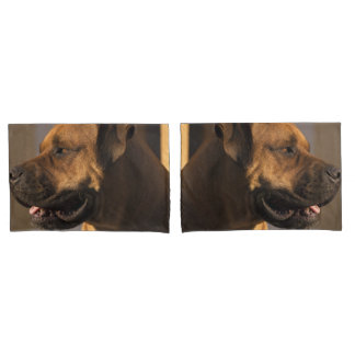 Gorgeous bull mastiff pillowcase