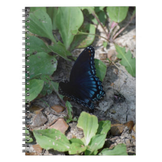 Gorgeous Butterfly Photograph Spiral Notebook