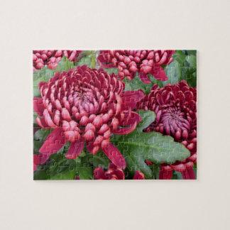 Gorgeous Chrysanthemums 8x10 Jigsaw Puzzle