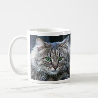 Gorgeous Fluffy Cat with Awesome Eyes Coffee Mug