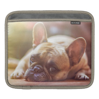 Gorgeous french bulldog lying down sleeve for iPads