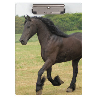 Gorgeous Friesian Horse Clipboards