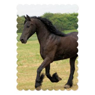 Gorgeous Friesian Horse 5x7 Paper Invitation Card
