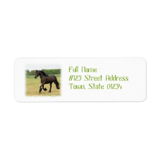 Gorgeous Friesian Horse Return Address Label