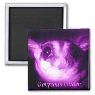 Gorgeous Glider Magnet