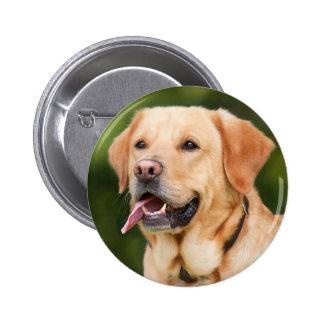 Gorgeous Golden Labrador 2 Inch Round Button