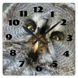 Gorgeous Great Grey Owl Close Up Wall Clock