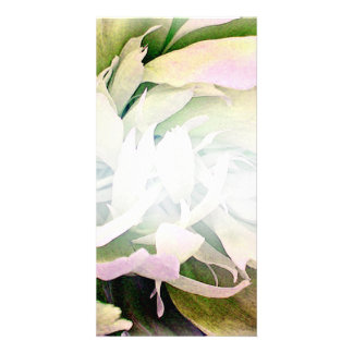 Gorgeous Green Blossom and White swirls Picture Card