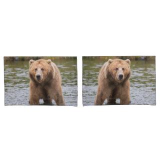 Gorgeous kodiak brown bear pillowcase