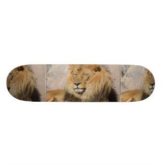 Gorgeous Lion Skateboard Deck