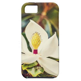 Gorgeous Mississippi Magnolia iPhone 5 Cases