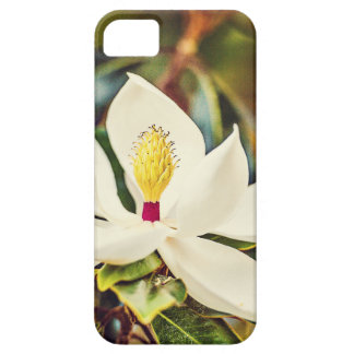 Gorgeous Mississippi Magnolia iPhone 5 Covers