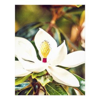 Gorgeous Mississippi Magnolia Letterhead