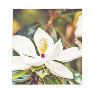Gorgeous Mississippi Magnolia Notepad