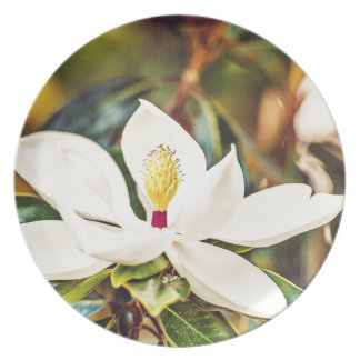 Gorgeous Mississippi Magnolia Plate
